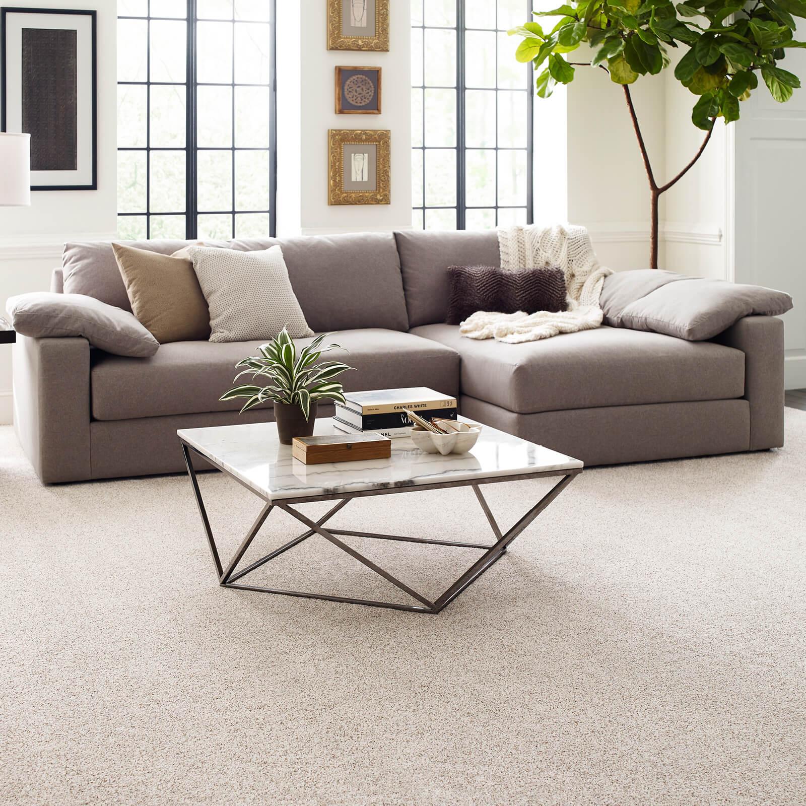 Modern living room   The Carpet Stop