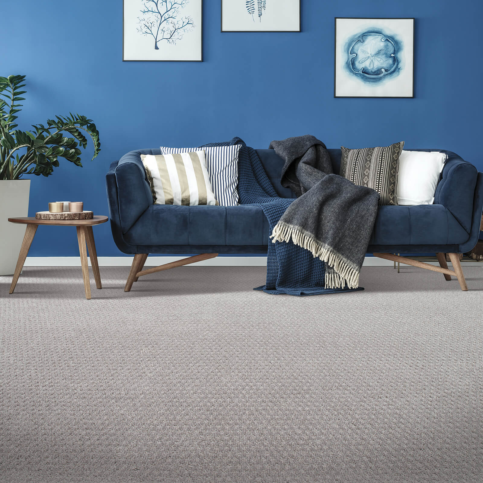 Stylish Effect | The Carpet Stop