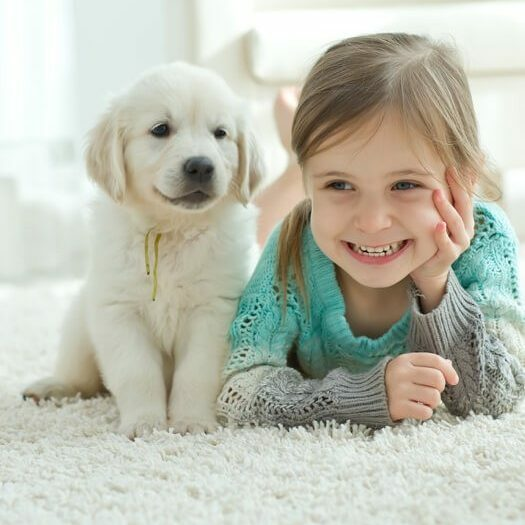 Kid with puppy on Carpet | The Carpet Stop